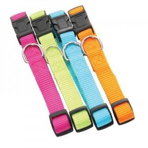 Collier nylon uni flashy aux couleurs vives pour chien