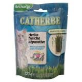 MUZO Recharge Herbe fraîche dépurative pour chat