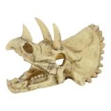 ZOLUX crâne dinosaure Tricératops - Décor pour aquarium
