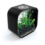 REEF ONE Life Square 30 Noir