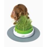 CATIT Senses 2.0 Jardin d'herbe pour chat