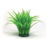 Plante pour aquarium REEF ONE EasyPlant Anneau d'herbe L