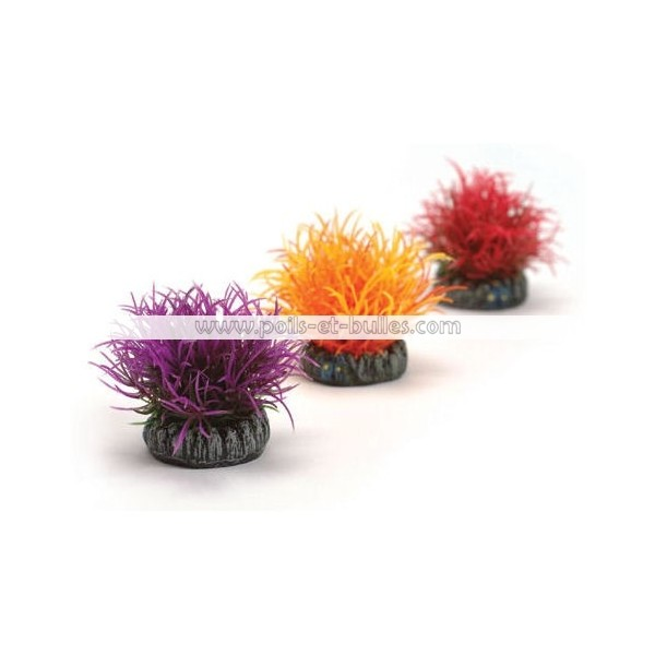 Reef one easyplant boules color es pour aquarium for Acheter aquarium boule