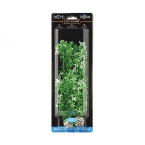 REEF ONE EasyPlant Fleurs d'hiver