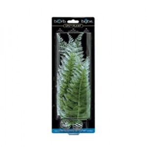 REEF ONE EasyPlant Fougère hiver