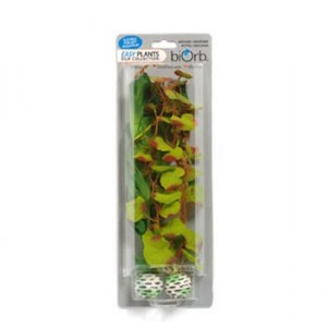 REEF ONE EasyPlant Silk M vertes