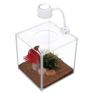 MARINA Betta Kit Cubus LED