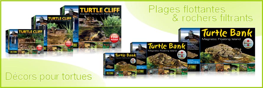 Articles pour tortues